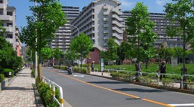 h-2008 06 01 019バイク5