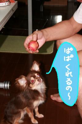 h-IMG_0102.jpg