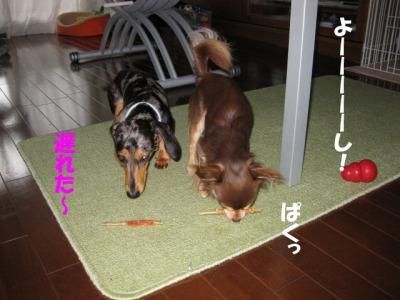 h-IMG_0520.jpg