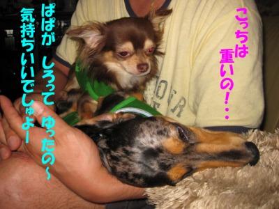 h-IMG_0532.jpg