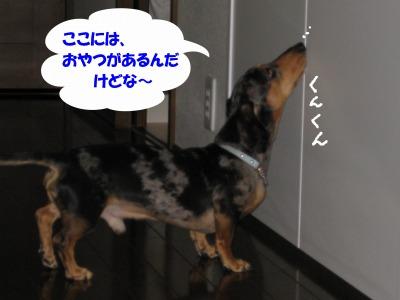 h-IMG_0571.jpg