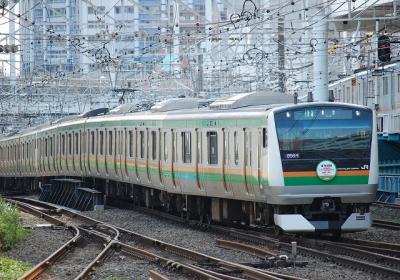 856M E233系E51+E01 普通東京行