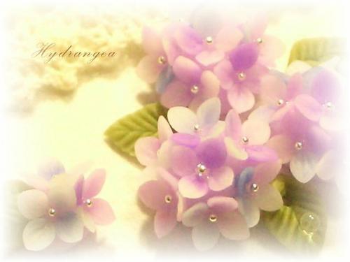 CIMG1301_edited.jpg