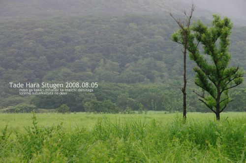 IMGP1431-s.jpg