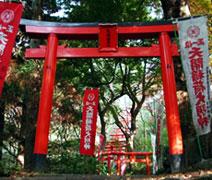 torii_japan_b.jpg