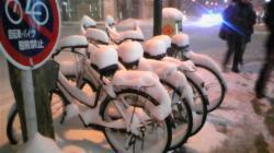 2008年1月17日北海道雪