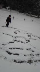 2008年1月23日アンパンマン
