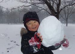 2008年1月23日大きな雪玉