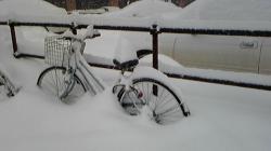 2007年1月24日北海道