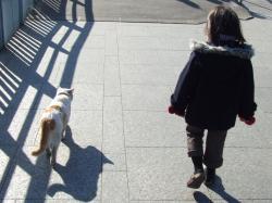 2008年2月1日散歩道