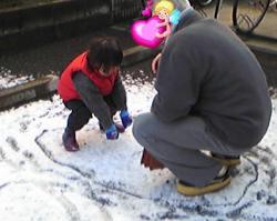 2008年2月7日相撲