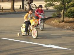 2008年2月22日自転車