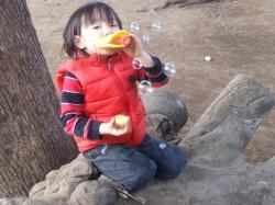 2008年3月4日しゃぼん玉