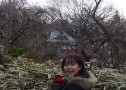 2008年3月6日梅林