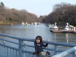 2008年3月11日池