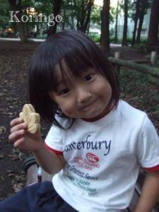 2008年9月9日クッキー