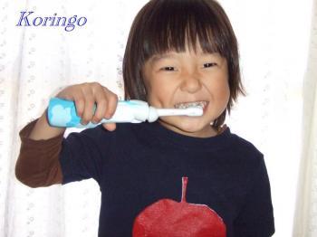 2008年10月15日歯ブラシ