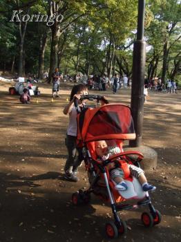 2008年10月4日公園