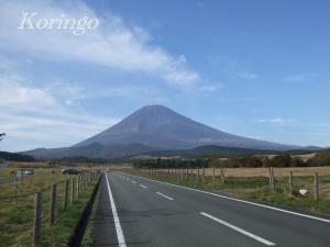 2008年11月2日富士山への道