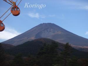 2008年11月2日富士山と観覧車