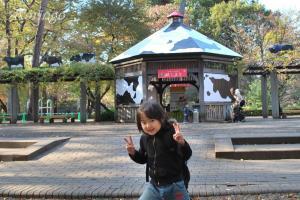 2008年11月26日文化園