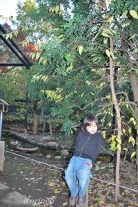 2008年11月26日オレ