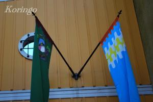 2008年11月30日旗