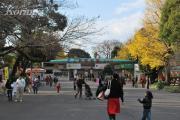 2008年12月6日上野動物園