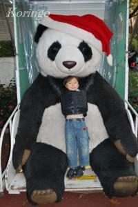 2008年12月6日パンダ
