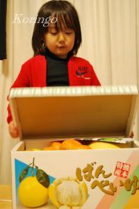 2009年1月10日贈り物