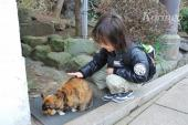 2009年1月7日猫と王子