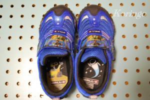 2009年1月10日ウォーリーの靴
