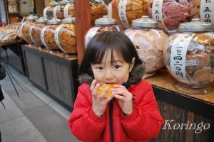 2009年1月18日お煎餅