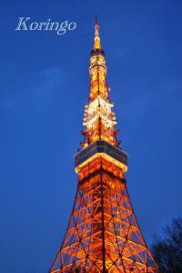 2009年1月18日東京タワー