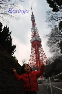 2009年1月18日タワーと王子1