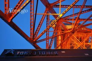 2009年1月18日見上げたタワー