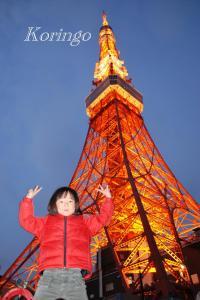 2009年1月18日タワーと王子2