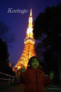 2009年1月18日タワーと王子3