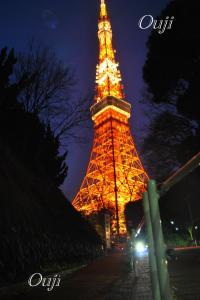 2009年1月18日王子様撮影