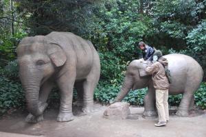 2009年1月21日象に乗せてもらう