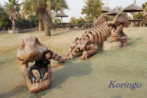 2009年1月21日恐竜