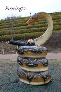 2009年1月21日ヘビに巻かれる
