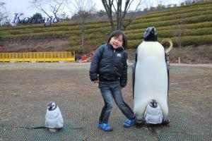 2009年1月21日ペンギン