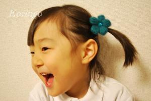 2009年1月25日姫