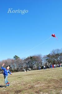 2009年1月25日凧揚げ2