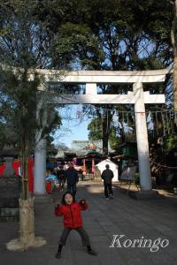 2009年1月3日武蔵野八満宮 鳥居