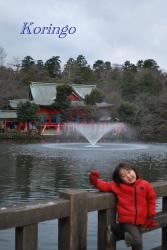 2009年1月3日井の頭弁財天