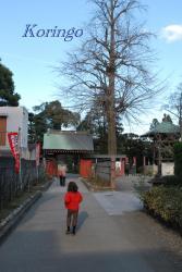 2009年1月3日安養寺