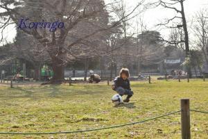 2009年2月7日サッカー少年