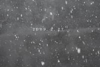 2009年2月27日雪